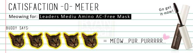 Catisfaction-o-meter (5x Innisfree Eco Eyebrow Masacara)