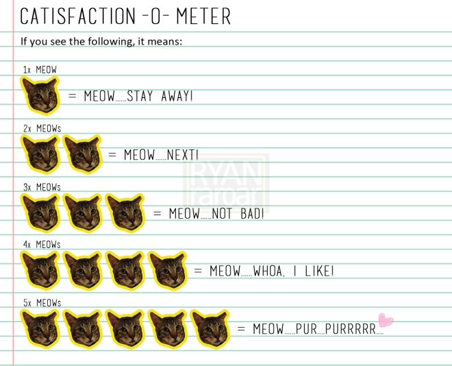Catisfaction-o-meter (Definition)