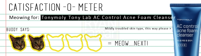 Catisfaction-o-meter (2x Tonymoly Tony Lab AC Control Foam Cleanser)