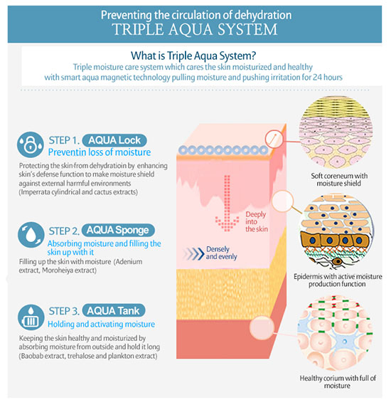 (What is this 'Triplex Aqua System' that is prevalent in the entire Super Aqua Ultra Water-Full line?) Credit: Google